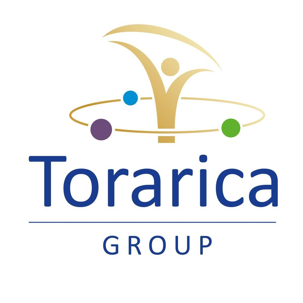 Projects - Torarica Group Resort logo